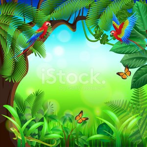 Tropical jungle with animals vector background Clipart Image.