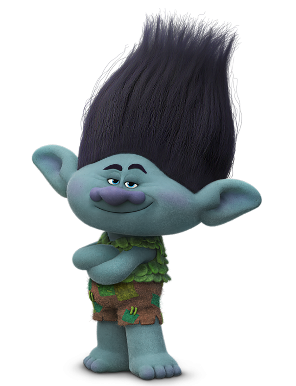 Trolls Branch Transparent PNG Image.