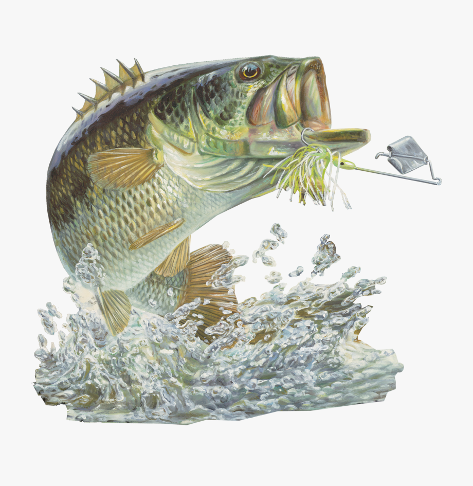 Bass Fishing Sticker.