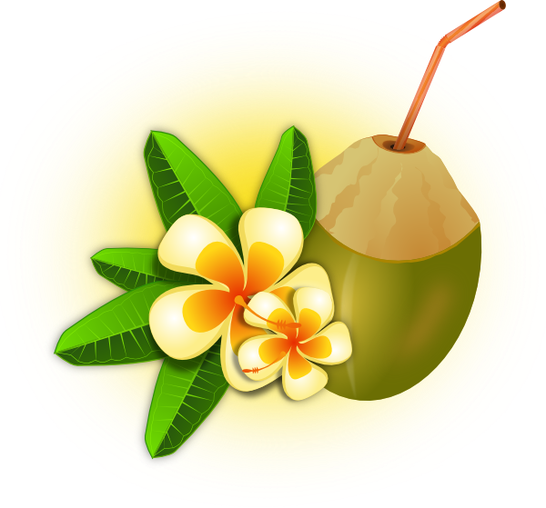 Tropical Flower With Coconut Drink Clip Art at Clker.com.