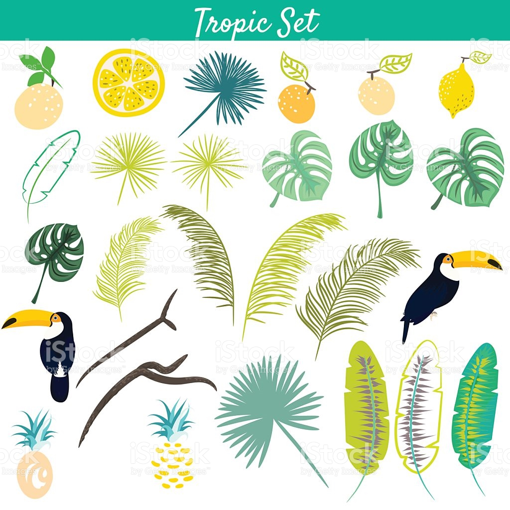 Tropic Clipart Vector Set stock vector art 547220862.