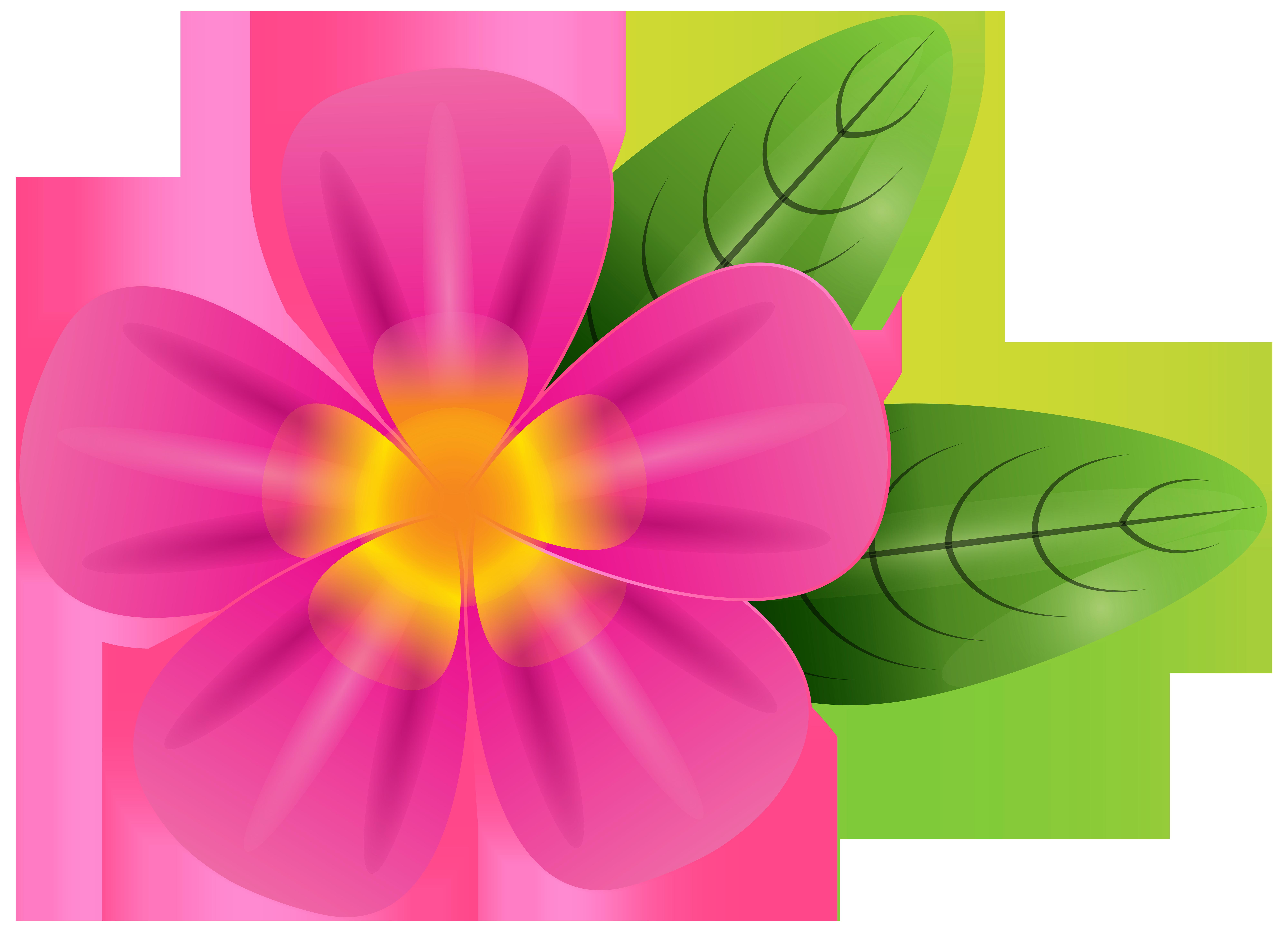 Pink Tropic Flower PNG Clip Art Image.