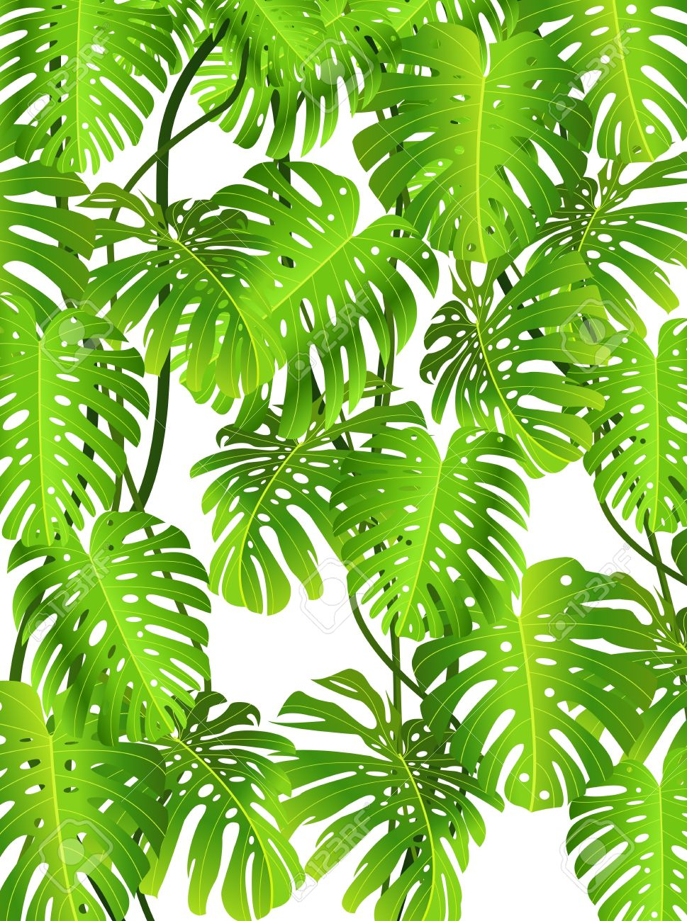 Tropical background clipart 6 » Clipart Station.