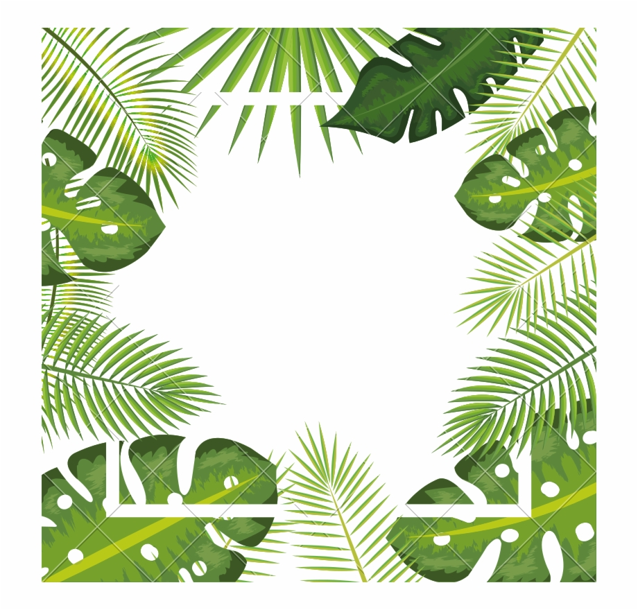 Tropical Background Png.