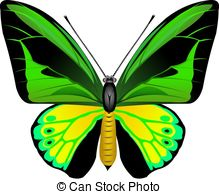 Butterfly Stock Illustrations. 112,753 Butterfly clip art images.