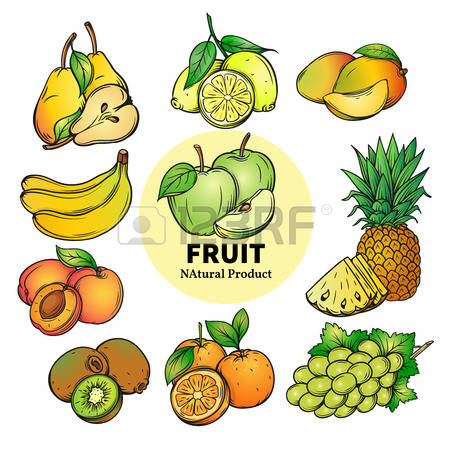 66,183 Tropical Fruit Stock Illustrations, Cliparts And Royalty.