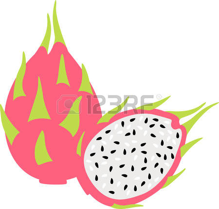 Cactus Fruit Stock Vector Illustration And Royalty Free Cactus.