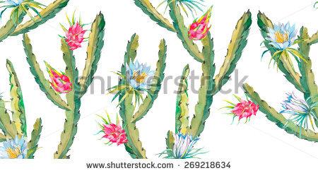 Cactus Fruit Banque d'Image Libre de Droit, Photos, Vecteurs et.