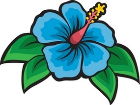 Showing post & media for Cartoon hibiscus plants.