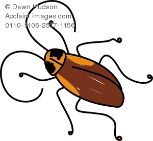 Clipart Image of A Creepy Cockroach Insect.