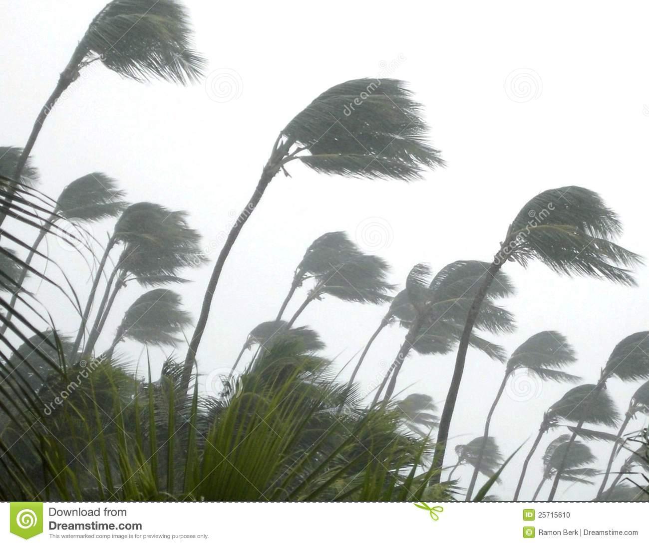 Tropical Storm Stock Photo.