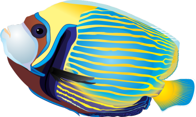 78+ Tropical Fish Clipart.