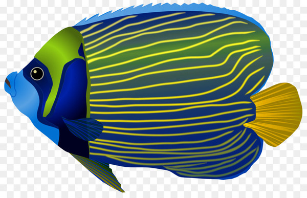 Fishing Tropical fish Clip art.