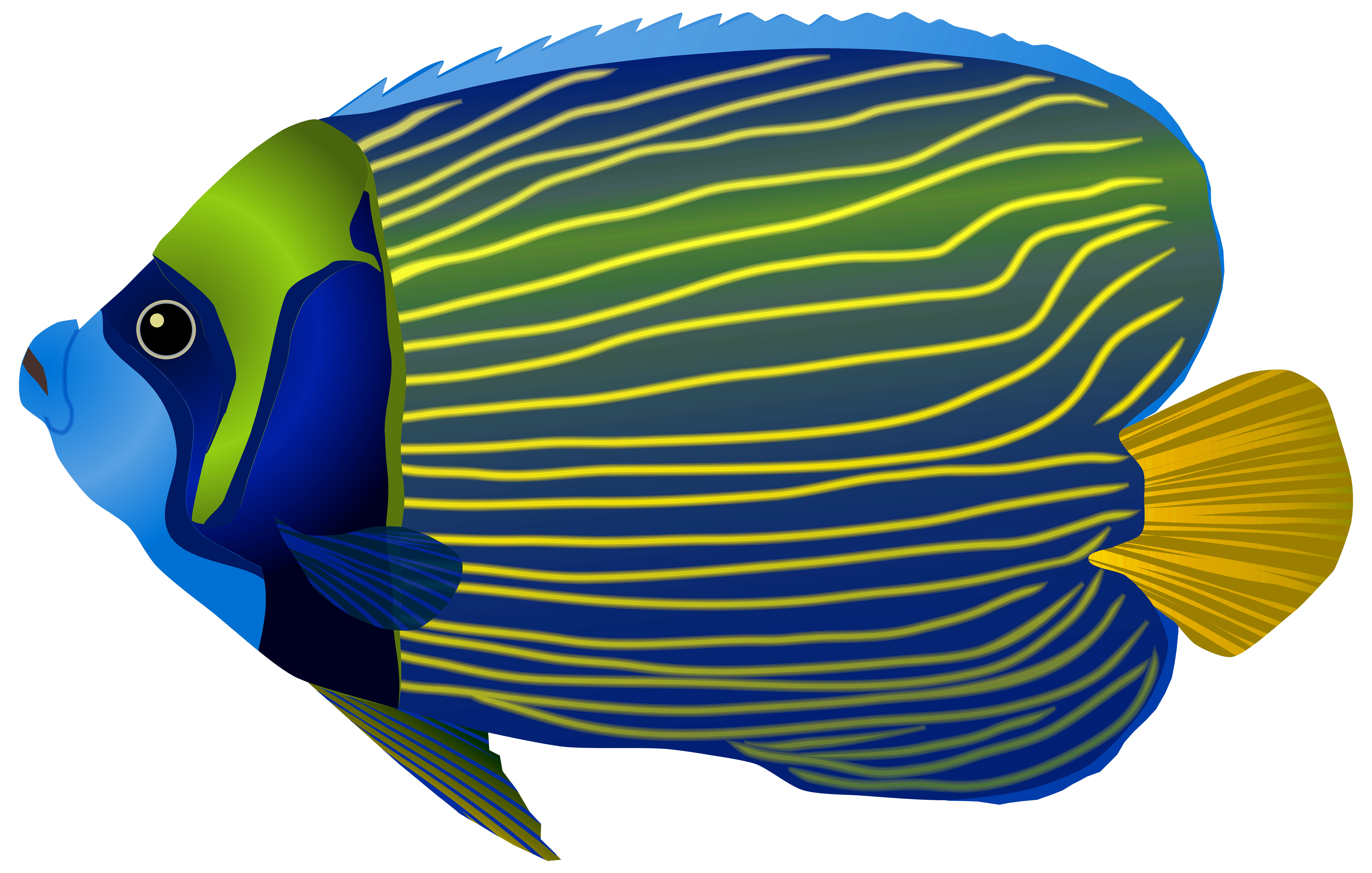 Tropical Fish Clipart fresh water fish 4.