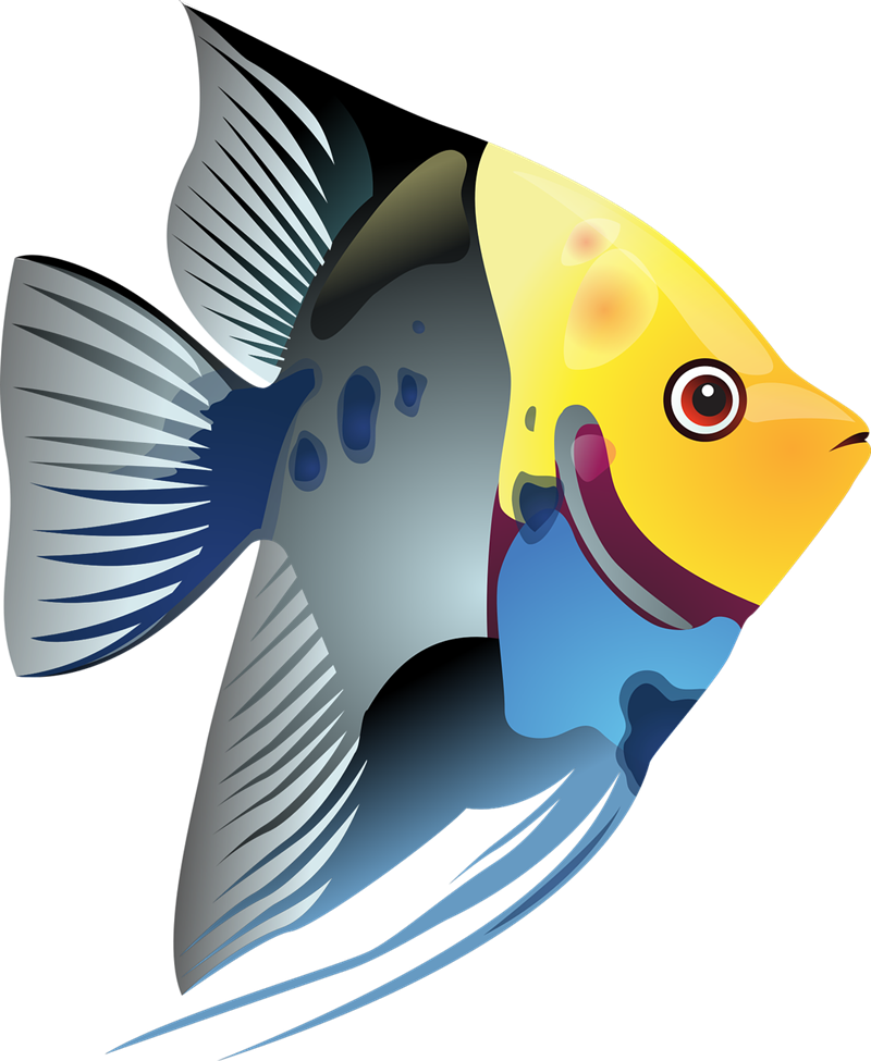 Tropical fish clipart free.