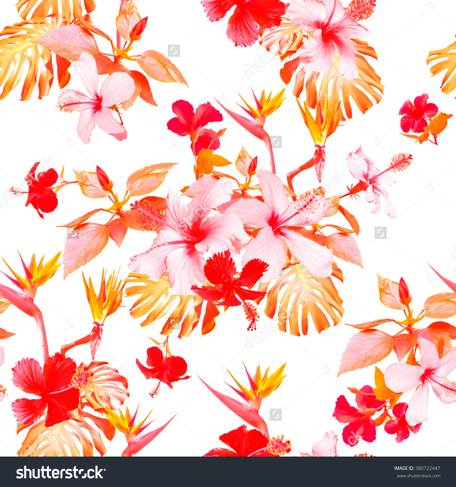 Tropical Floral Prints On White Background Stock Illustration.