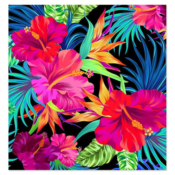 17 Best ideas about Tropical Art on Pinterest.