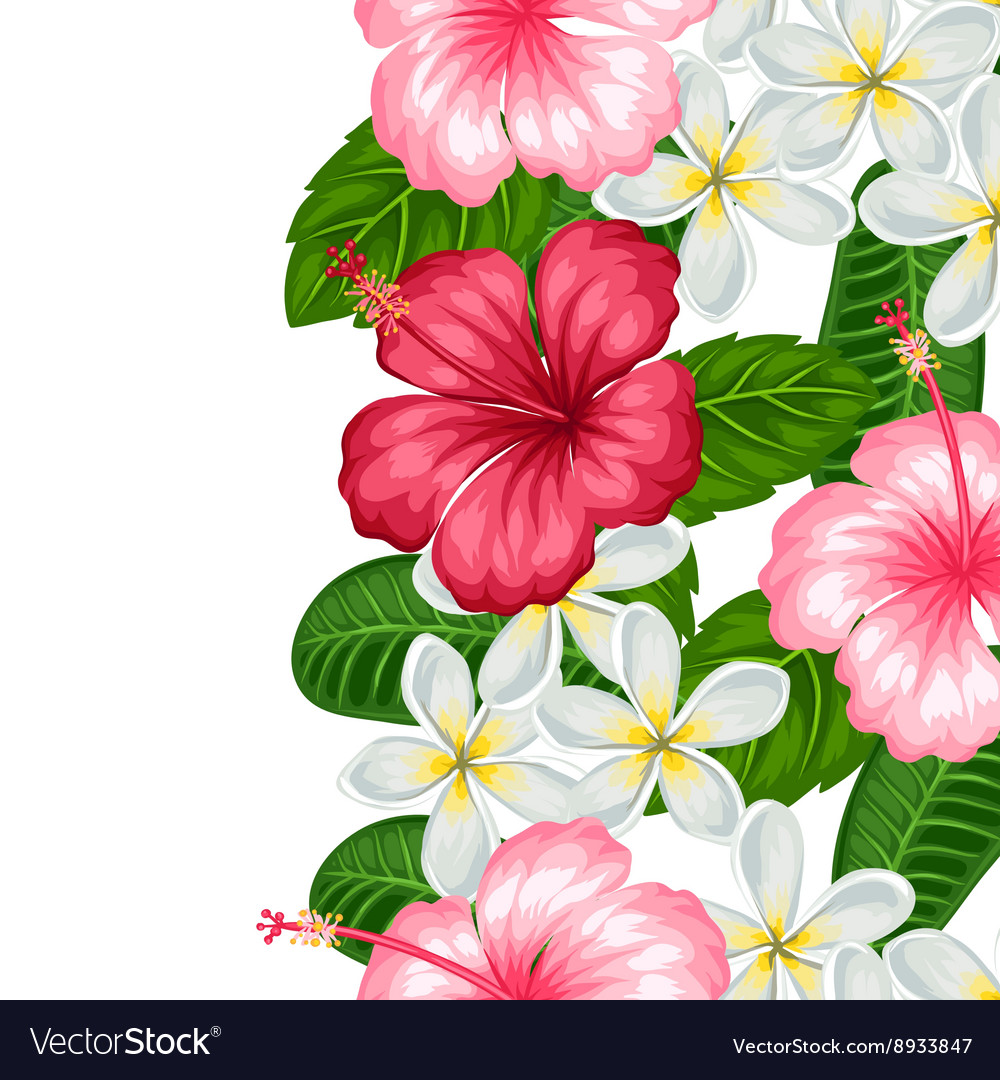 Seamless border with tropical flowers hibiscus and.