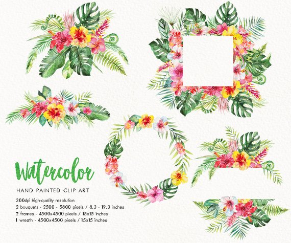 Tropical floral frame border clipart, watercolor clipart.