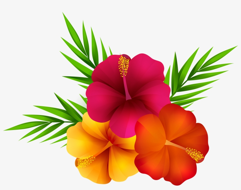 Exotic Flowers Png Clip Art Imageu200b Gallery Yopriceville.