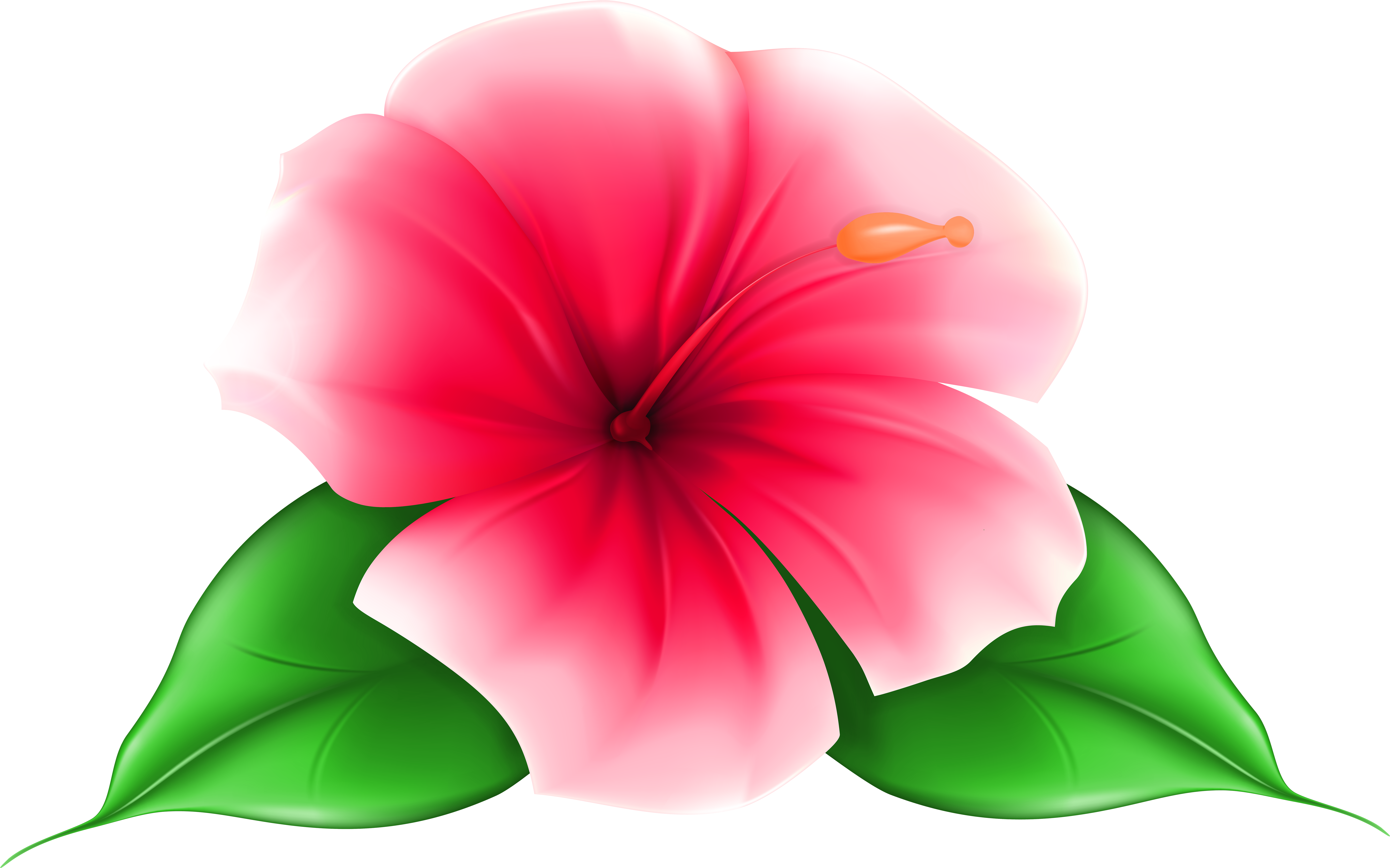 HD Exotic Flower Png Clip Art Image.