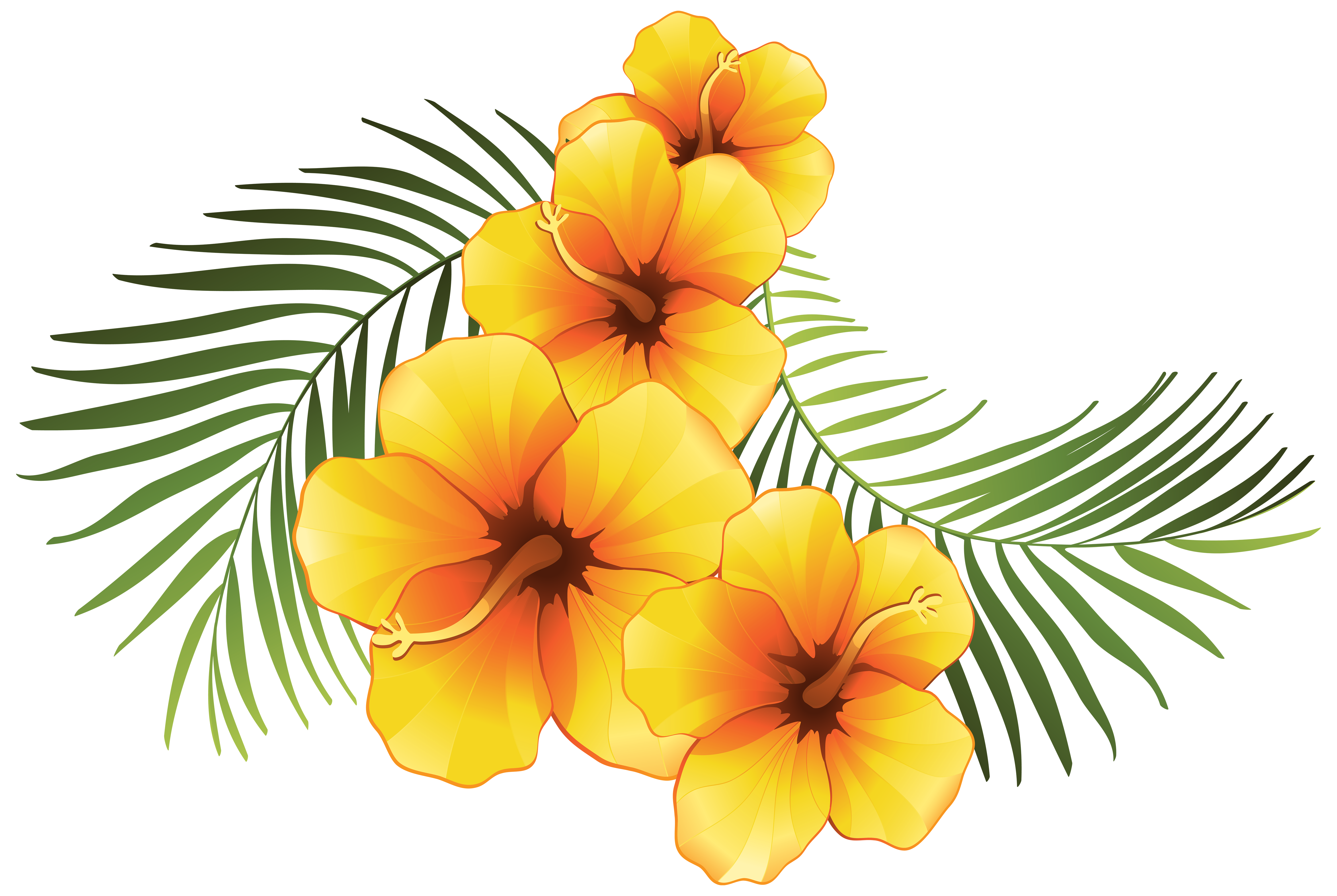 Tropical Flowers Clipart.