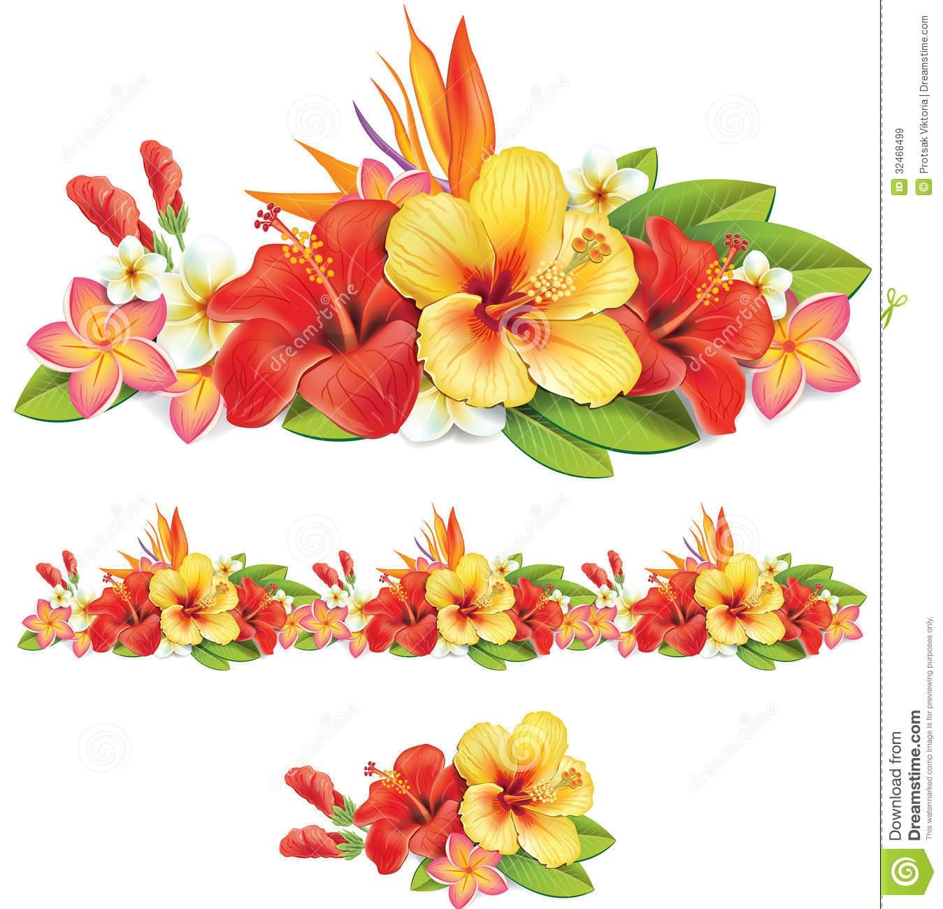 Similiar Tropical Flower Border Keywords.