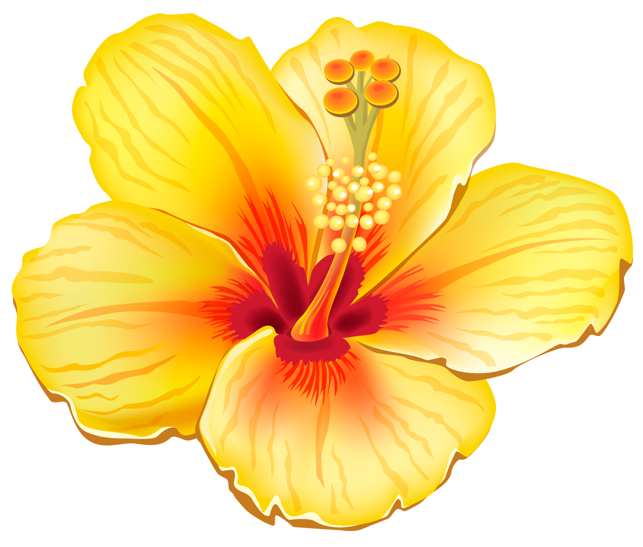Free Tropical Flowers Cliparts, Download Free Clip Art, Free.