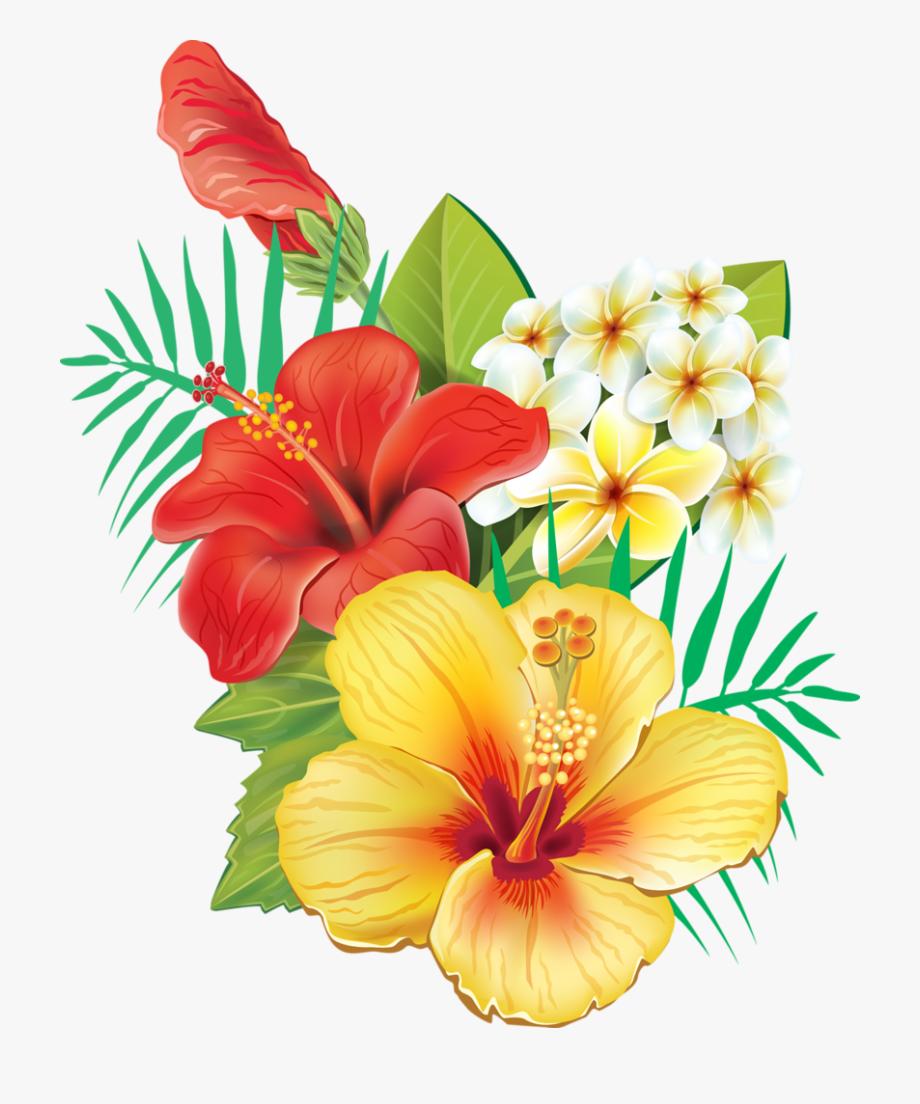 Hibiscus Clipart Garland.
