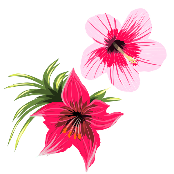 Red with pink tropical flowers vector 01 free download.
