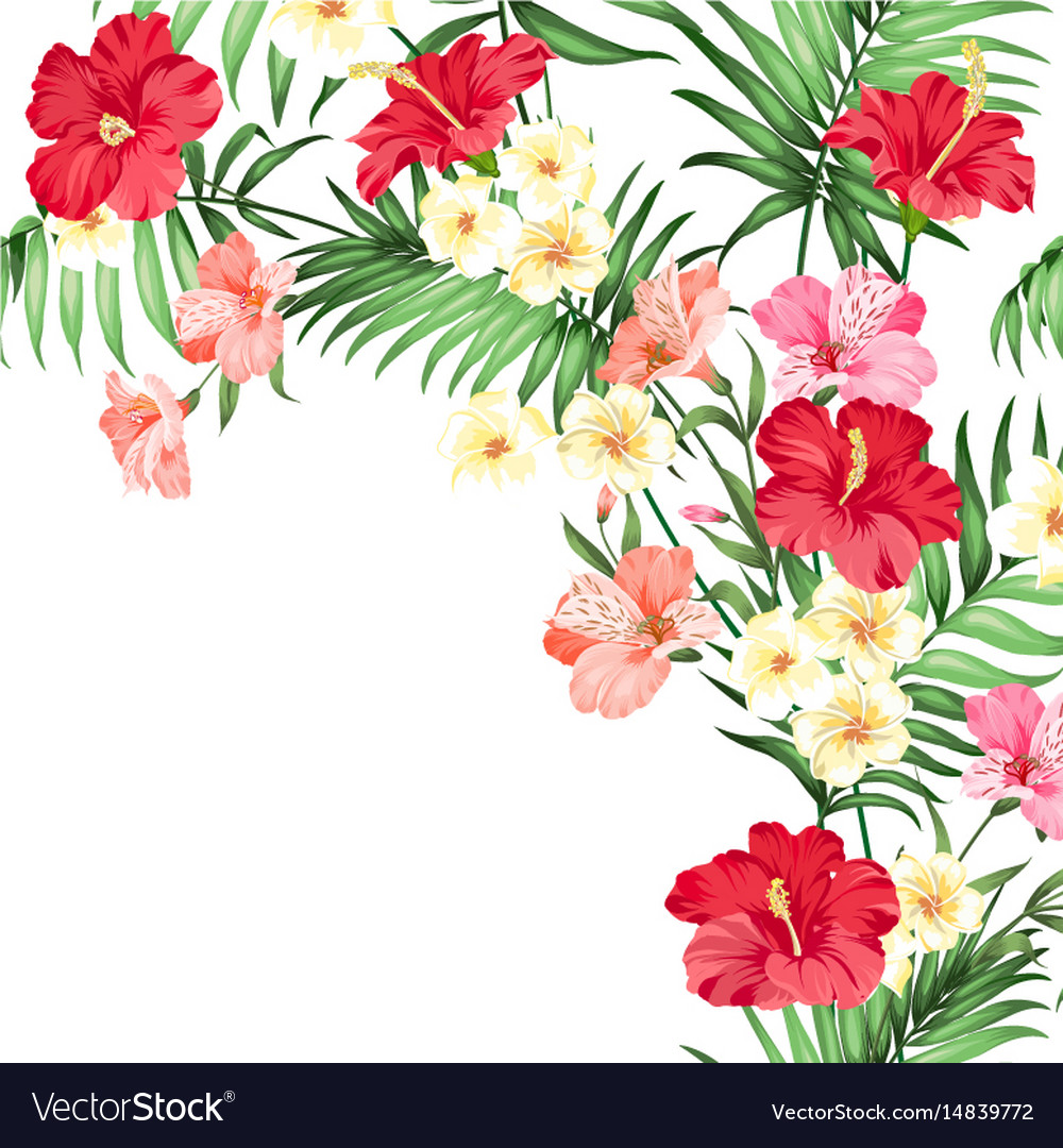 Tropical flower garland.