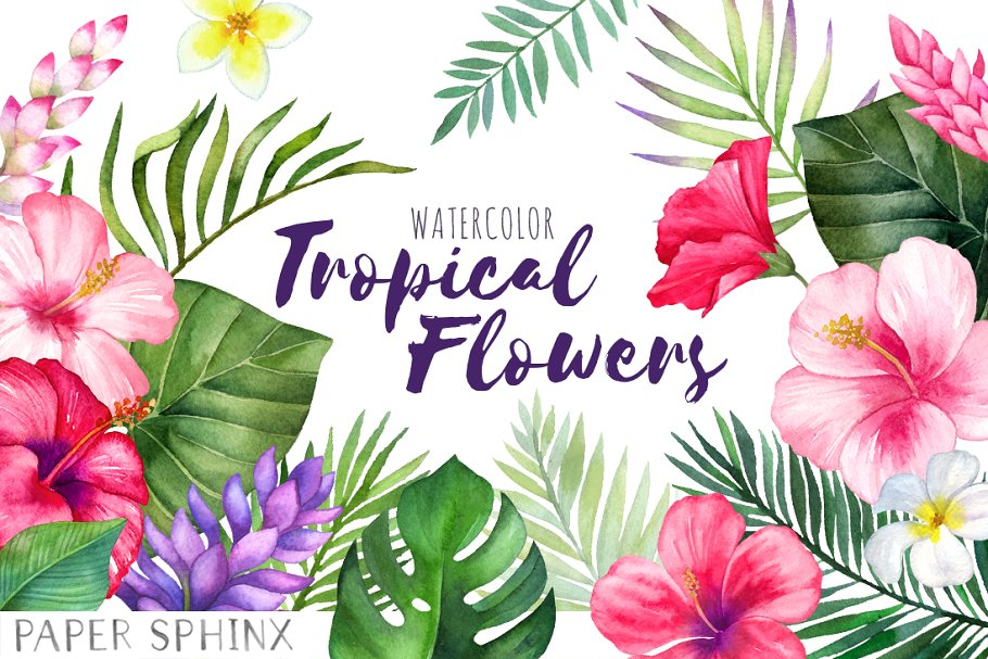 Watercolor Tropical Flowers Clipart ~ Graphics ~ Creative Market.