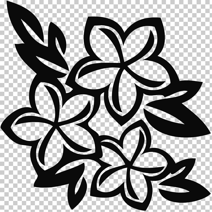 48 tropical Flowers Clipart PNG cliparts for free download.