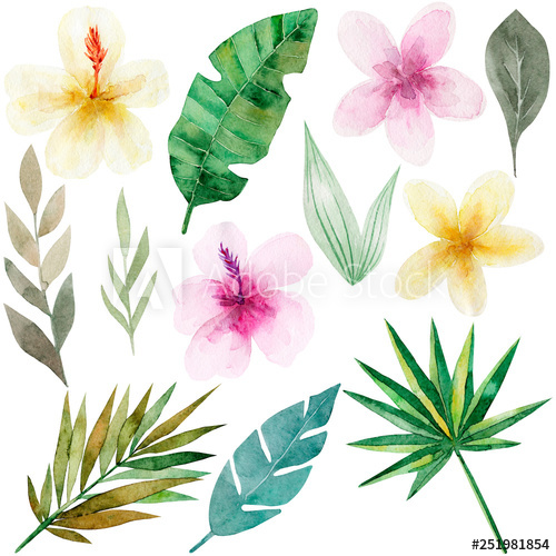 Set of tropical flowers and green palm leaves. Exotic and.
