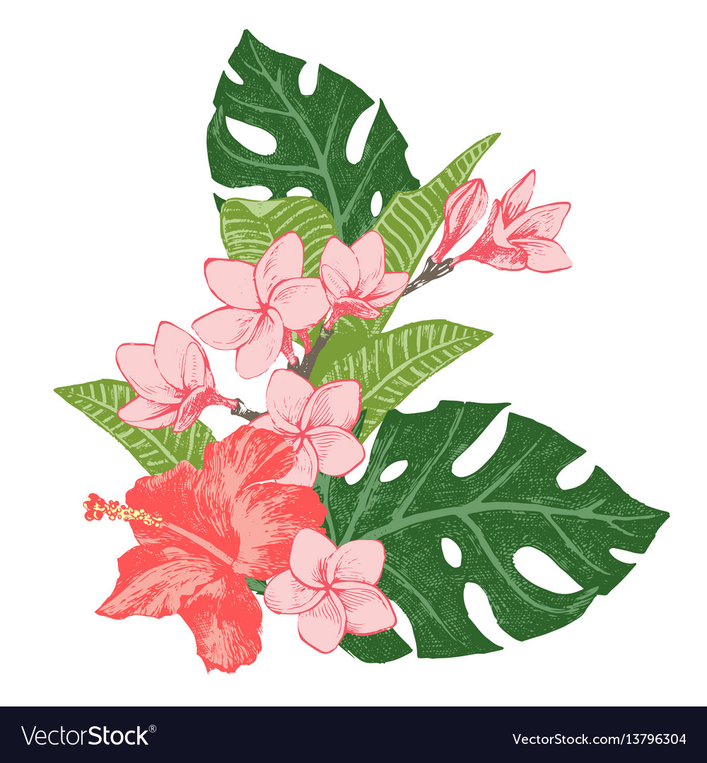 Bright exotic tropical flowers and leaves.