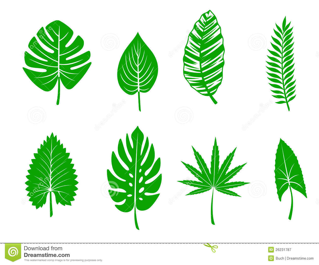Green Tropical Leaves Royalty Free Stock Photography.