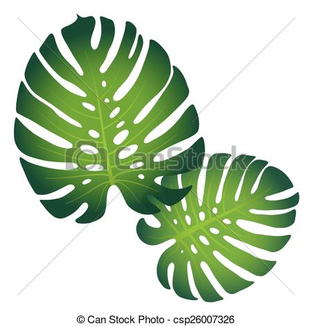 Monstera plant Vector Clipart EPS Images. 632 Monstera plant clip.