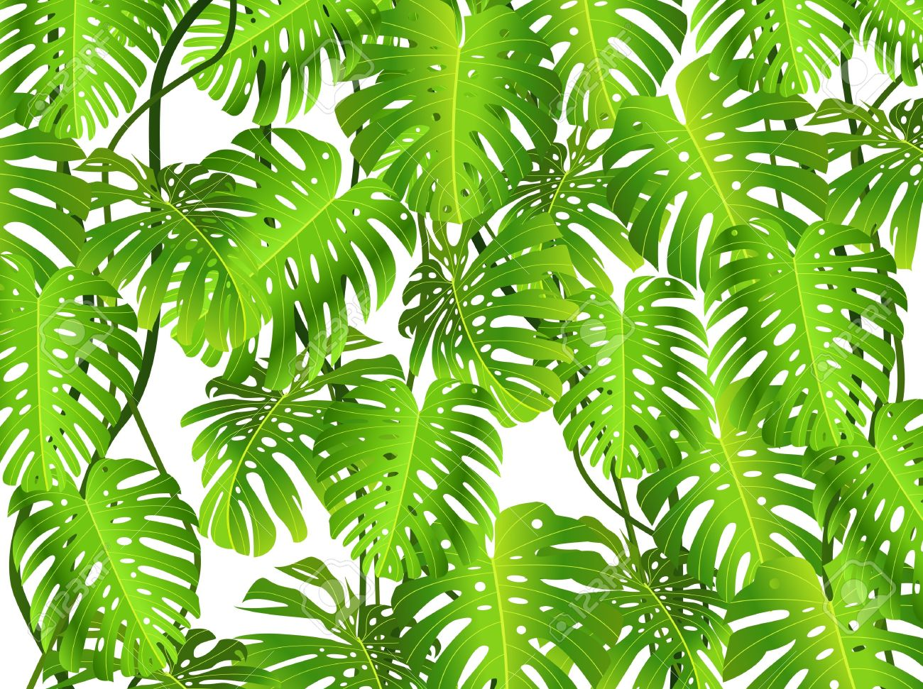 Jungle foliage clipart.