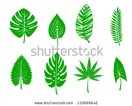 Jungle Leaves Stock Images, Royalty.