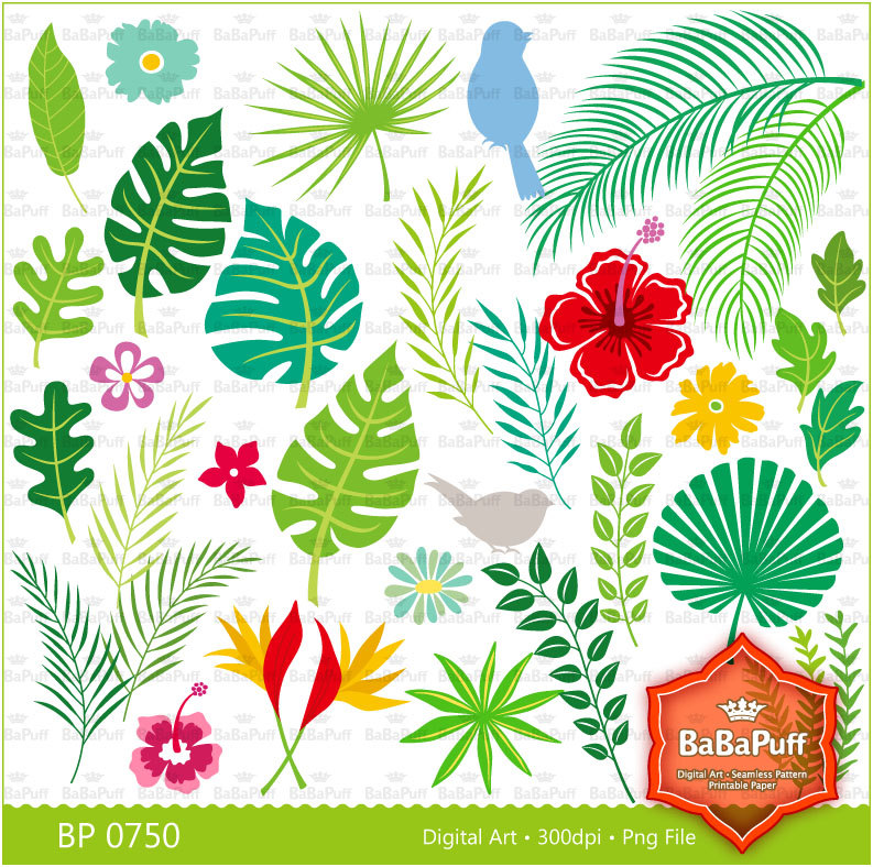 Tropical Foliage Clipart.