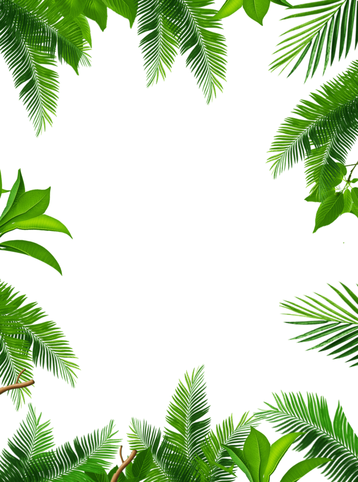 Tropical Leaves Frame PNG Image Free Download searchpng.com.