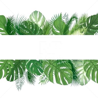 Tropical Leaves Png (102+ images in Collection) Page 1.