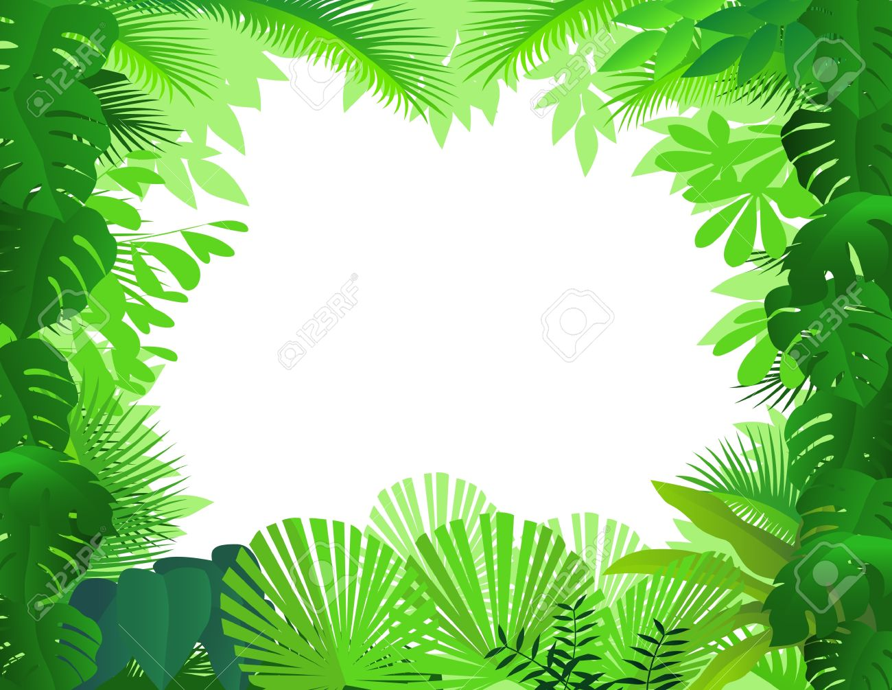 Tropical rainforest clipart.
