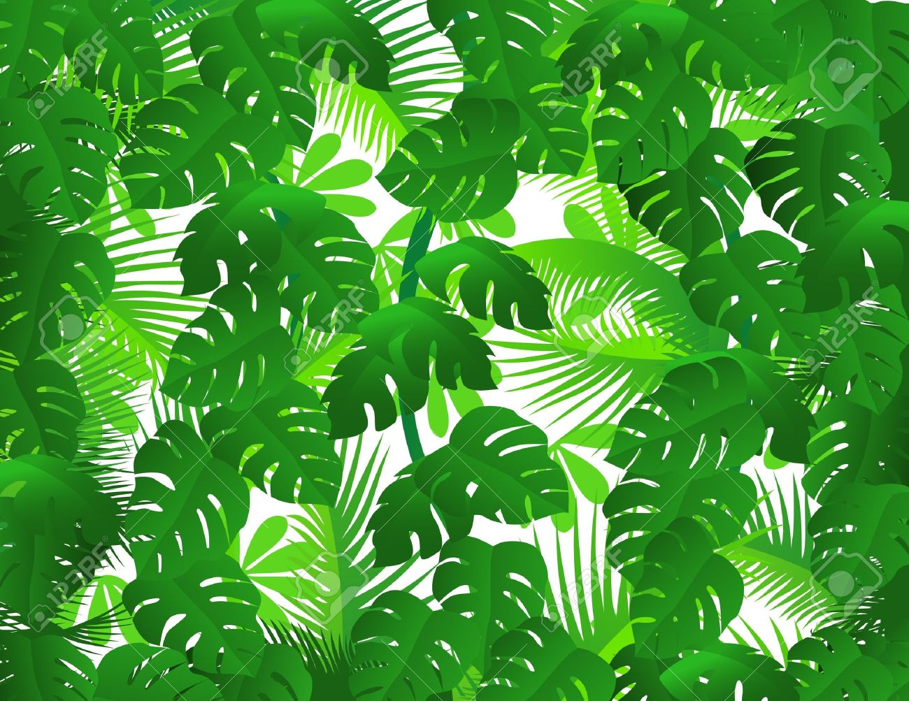 Tropical Rainforest Clipart - Synkee