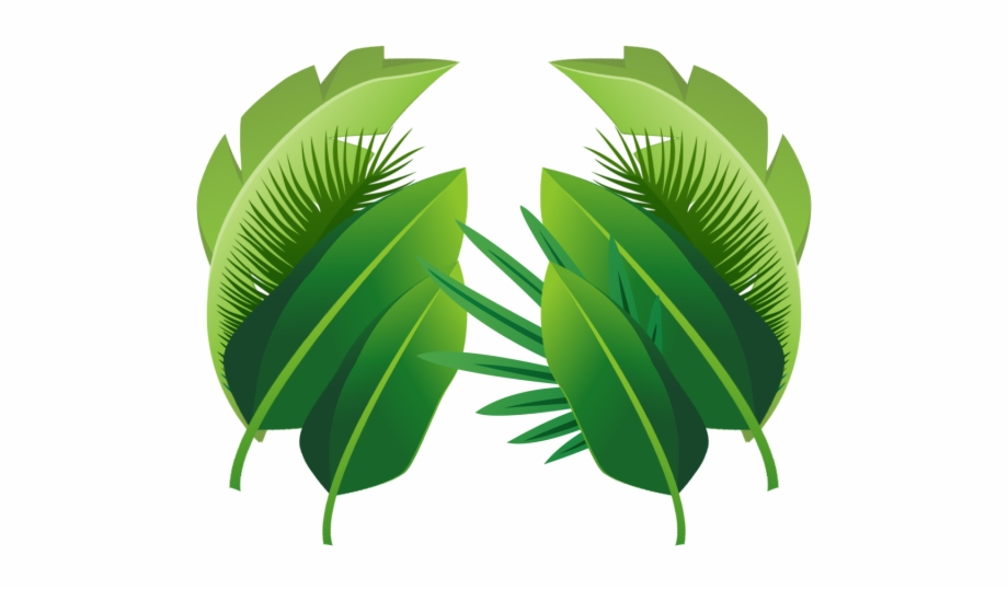 Transparent Background Tropical Leaf Png Free PNG Images.