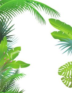 Free Tropical Border Cliparts, Download Free Clip Art, Free.
