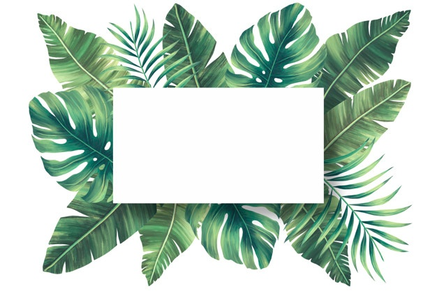 Tropical Leaves Vectors, Photos and PSD files.