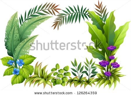 Tropical Plants Stock Photos, Royalty.