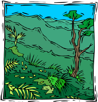 Tropical Forest Clipart.