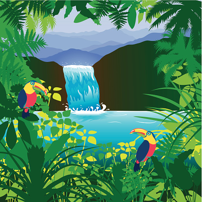 Showing post & media for Cartoon tropical rainforests.